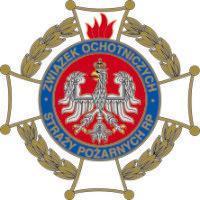 Związek Ochotniczych Straży Pożarnych Rzeczypospolitej Polskiej przekazał kolekcjonerski hełm strażacki na aukcję WOŚP - grafika